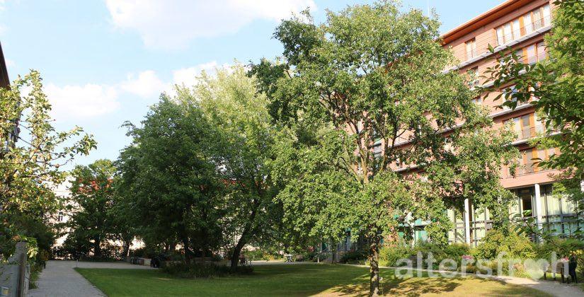 Blick in den parkähnlichen Garten des Hauses 32a der Seniorenstiftung Prenzlauer Berg in Berlin