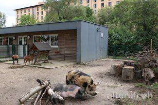 Tierhaus in der Seniorenstiftung Prenzlauer Berg Haus 32 in Berlin
