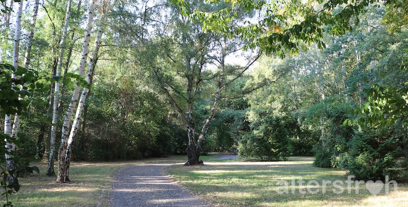 Angrenzender Park am Vitanas Senioren Centrum Rosengarten in Berlin Lankwitz
