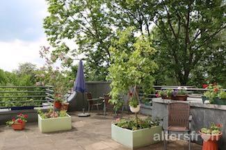 Blick auf Dachterrasse des Vitanas Senioren Centrums Schäferberg