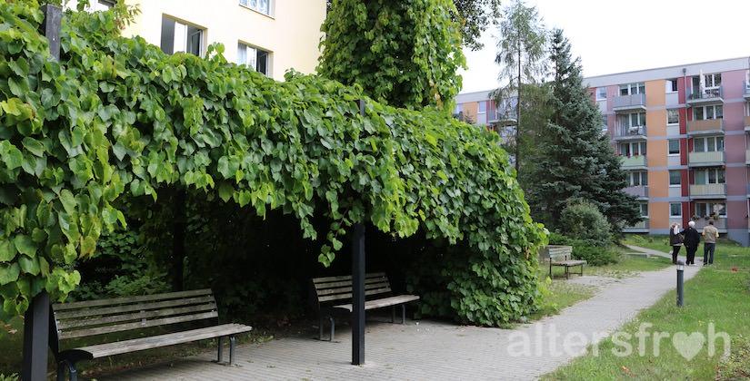 Sitzgelegenheiten im Garten des Service Wohnens Waldstadt in Potsdam