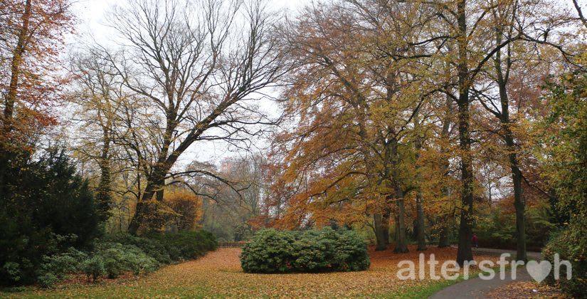 Stadtpark Steglitz vor dem Vitanas Senioren Centrum Am Stadtpark in Berlin Steglitz-Zehlendorf